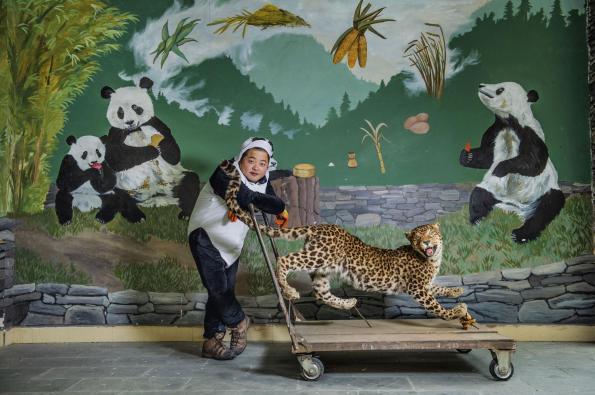 leopard-adapt-1900-1